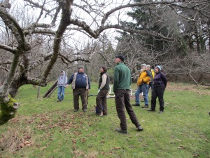 Bob discusses winter pruning with some of the volunteers.