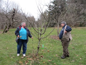 Wilma and Bob review the pruning job.
