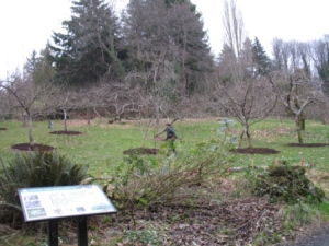 Check out the improved visibility of the orchard from the information sign.